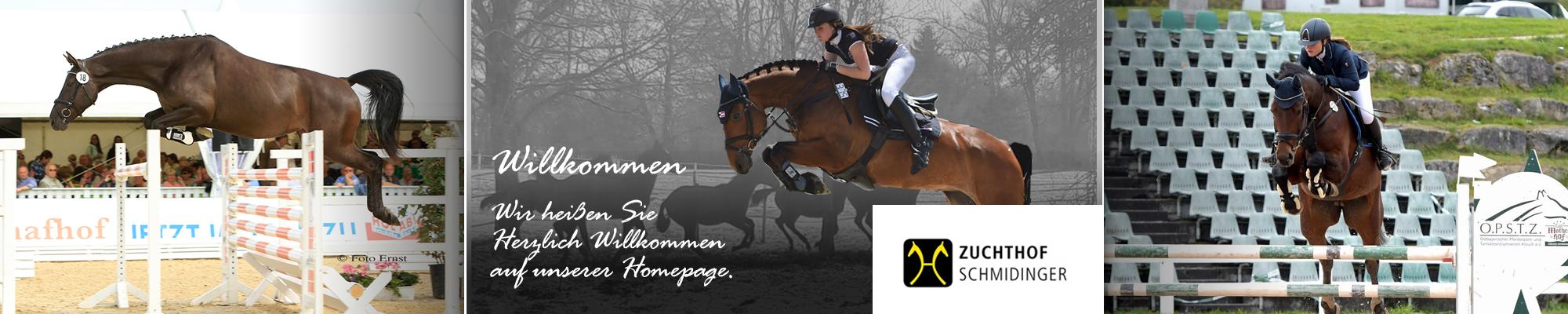 Zuchthof Schmidinger-Banner